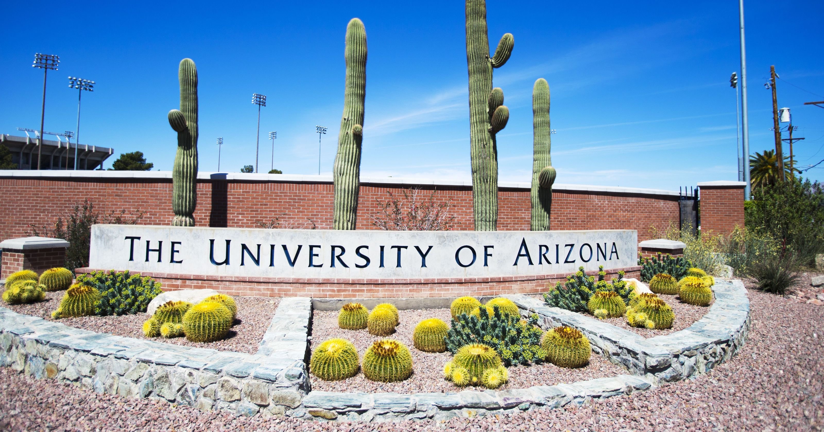 The University of Arizona is one among the nine institutions to receive the Seal of Excelencia certification for serving Latino students.