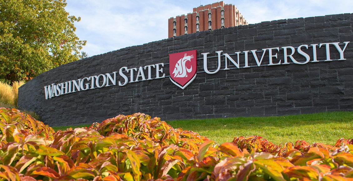 A sign reading 'Washington State University.'