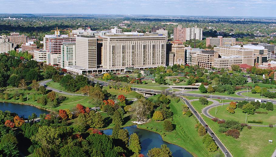 The Washington University Medical Campus