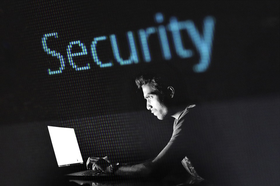 cybersecurity analyst