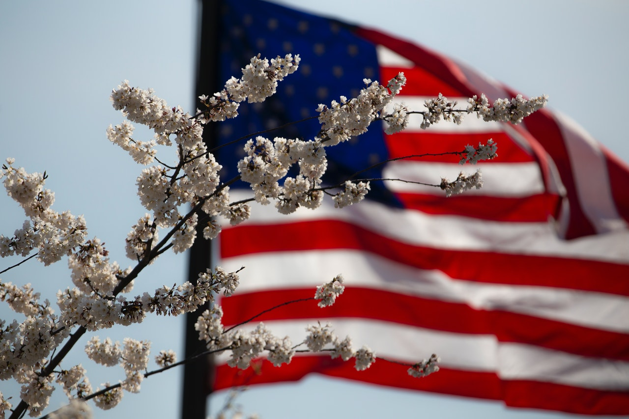 A US flag wavering behind some white flowers