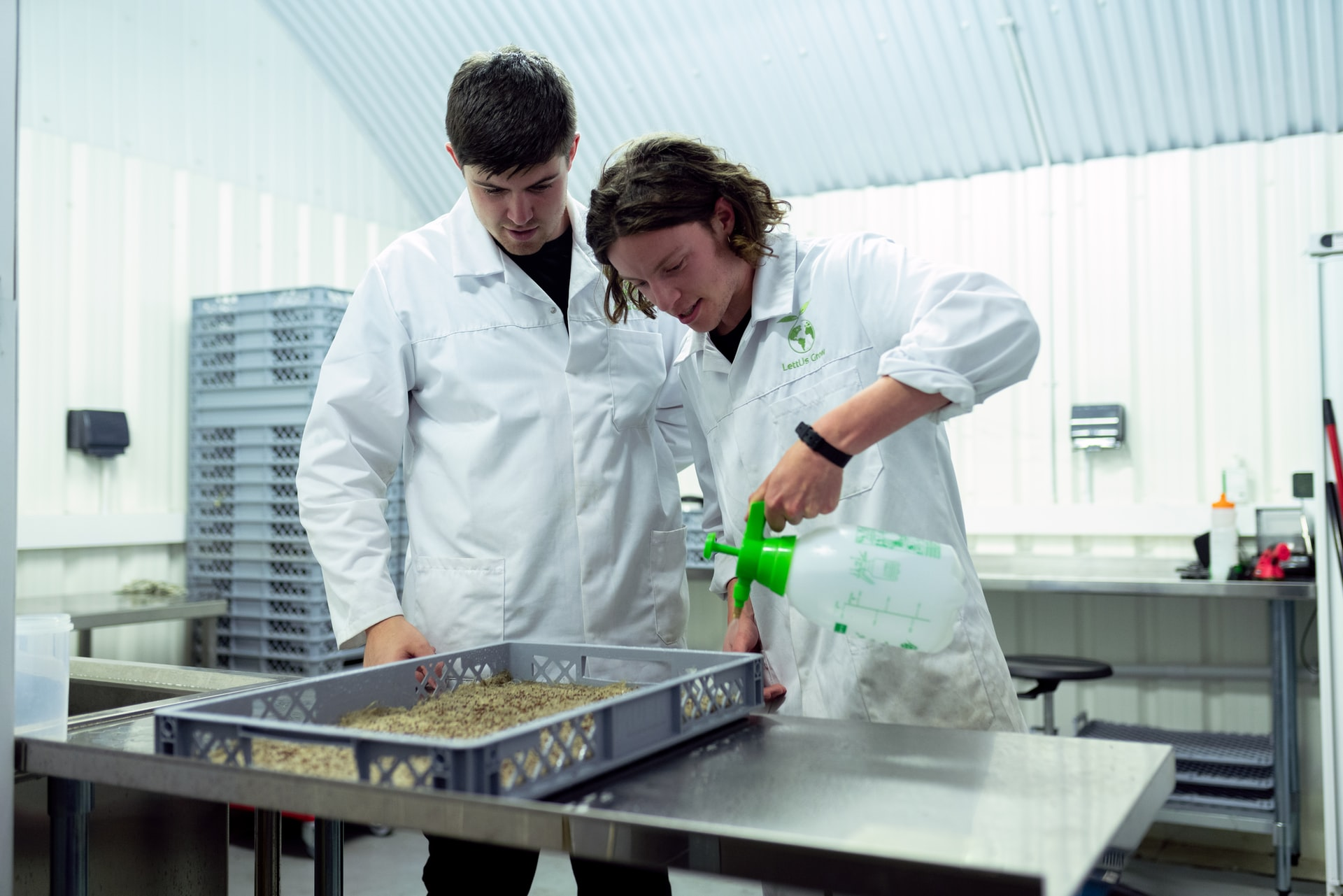 Male engineers spray seeds with nutrients in sustainable indoor farming practices